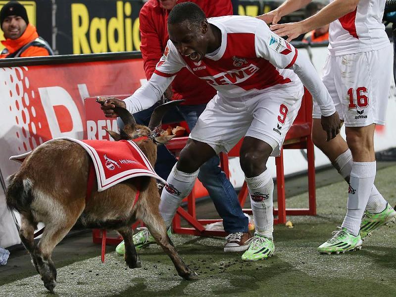 FC Koln vs Dusseldorf - Análise e Prognósticos